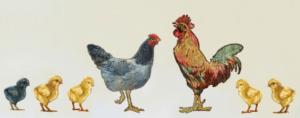 Гладните пиленца - приказка за нашите желания и потребности